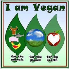 Vegan ❤