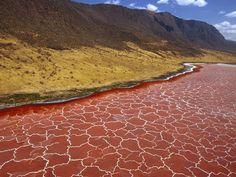 Tanzania's Lake Natron