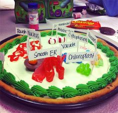 Plant Cell Cookie Cake