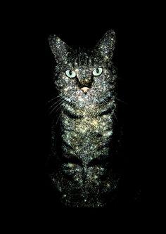 Celestial Cat - The Tabby & The Hercules Globular Cluster M13