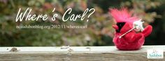 Where's Carl? - Nonprofit social media fundraising campaign by BC/DC Ideas