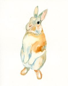 Bunny watercolour painting
