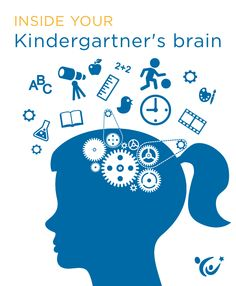 What insights can neuroscience offer parents about the mind of a kindergartner?