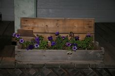 Old ammo box that I turned into a planter