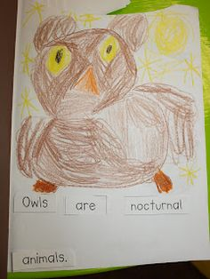 Mrs Jump's class: Owls and Veteran's Day
