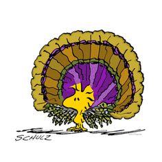 Woodstock Turkey Shower Curtain