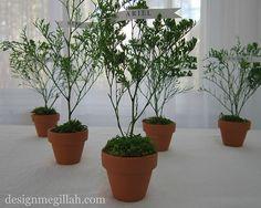 Miniature Tree place card for Tu B' Shevat
