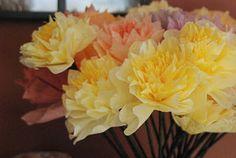 Kávéfilter virágok - Coffee Filter Flowers
