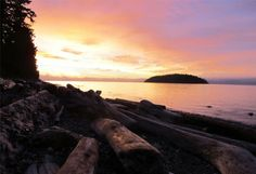 7 Reasons to Visit the Sunshine Coast in the Winter | BCLiving