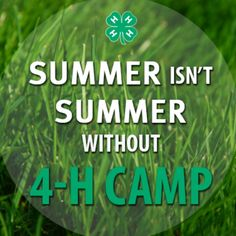Haven't actually been to 4-H camp but I can say that summer isn't summer without 4-H!