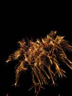 fireworks - I can't wait for 4th of July!