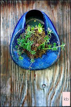 bed pan, pan garden, recycl idea, toilet, metal, blue, flower beds, bedpan, bed garden
