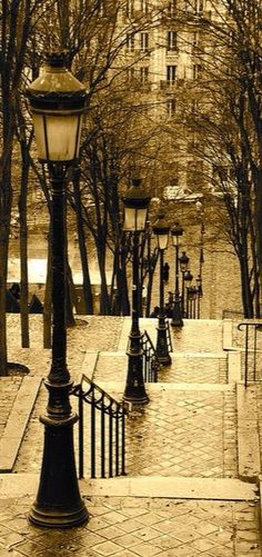 I love the brick road with the old lamppost with the pretty winter trees. Paris