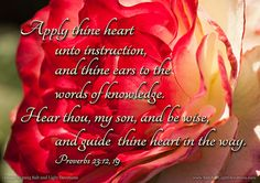 Apply thine heart unto instruction, and thine ears to the words of knowledge. Hear thou, my son, and be wise, and guide thine heart in the way. Proverbs 23:12, 19 KJV saltandlightdevotions.com