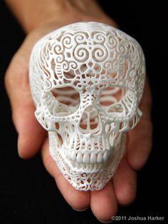 3D Printed Crania Anatomica Filigre (Small) $95