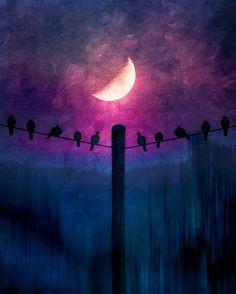 .☽ #moon #Luna