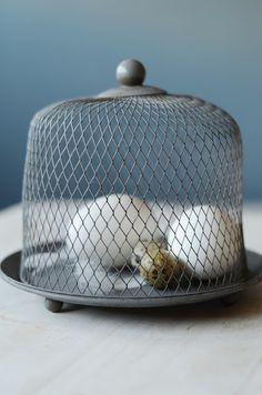 galvanized chicken wire dome & eggs