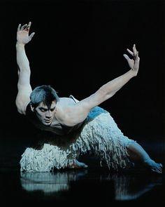 Adam Cooper in Matthew Bourne's Swan Lake ❤️