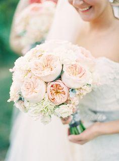 Lush garden roses.