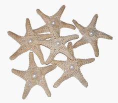 crochet starfish w/pearl