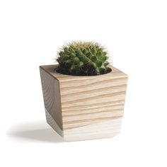 Tapered Wood Planter in Ash and Antique White