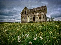 Forgotten home in Idaho.  I love this image.  There is no life in the home and yet the flowers grow.  Life goes on...