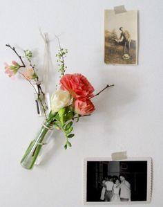 DIY: Medicine Vials as Valentine's Day vases by Erin Boyle ; Gardenista