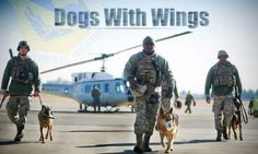 Military working dog handlers from the 374th Security Force Squadron walk away from a UH-1N Huey helicopter during fly-away security team training at Yokota Air Base, Japan, Feb. 25, 2013. The real work of the FAST security team members comes when their aircraft lands. From there, the team must stay vigilant until the mission is complete. (U.S. Air Force photo by Staff Sgt. Stacy Moless)