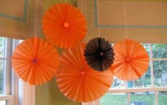 classroom decor - any color for any season
