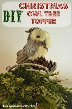 """How to make DIY Christmas decorations. DIY """"owl"""" christmas tree topper {make a nest for your owl} using a candle holder, fresh holiday greens and pinecones. by Four Generations One Roof"""