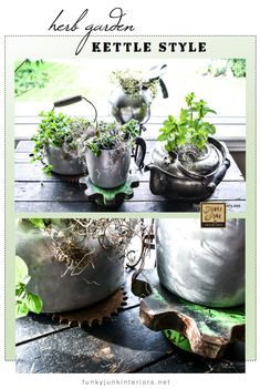 AN INDOOR HERB GARDEN planted in old kettles. via Funky Junk Interiors