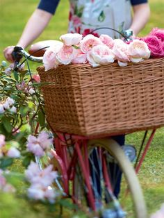 bike basket of flowers