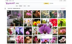 Yahoo! Image Search now shows tens of millions of Flickr photos that are available for re-use or re-posting under Creative Commons on its search results page across the web and mobile devices. Go to Yahoo! Image Search either on the web, your tablet or mobile phone. Search for any query.