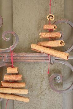 cinnamon stick trees