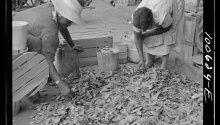 10 Vintage Photos of Farmers Baling Hay - Modern Farmer