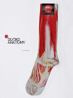 Socks anatomy