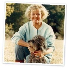 Doris Day Animal Foundation (Note from Pinner: Great Celeb, great cause, great pics of Doris Day, such a classy lady!)