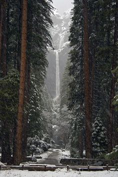 Lower Falls, Yosemite, California