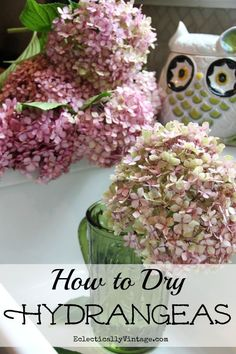 Drying #Hydrangeas - follow these simple step by step directions to have beautiful dried flowers all year long!  eclecticallyvintage.com