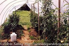 How to Build a PVC Hoophouse for your Garden