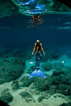 mermaid hannah fraser rising to the surface of the ocean
