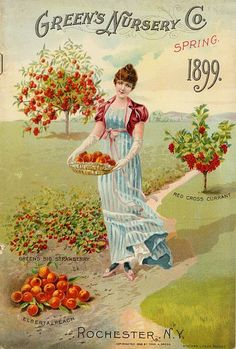 American Seed Catalogs from Smithsonian Institution Libraries