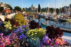 Victoria, B.C. - Canada