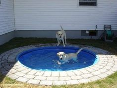 Place a plastic kiddie pool in the ground. It'd be easy to clean and looks nicer than having it above ground. Big dogs can't chew it up or drag it around and who say's it has to be just for the dogs?
