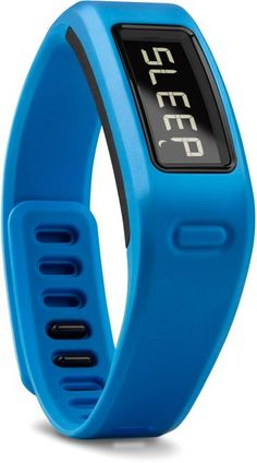 Fitness Tracker $80 at REI