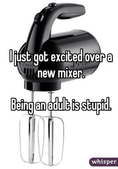 I just got excited over a new mixer.  Being an adult is stupid.