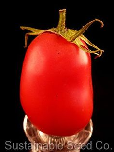 Hungarian Paste Tomato Seeds (78 days)