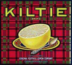 "This fruit crate label was used on Kiltie Brand Grapefruit, c. 1930s: ""Kiltie Brand."