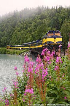Alaska Railroad Photos