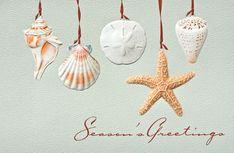 Sea Shells Embossed Christmas Cards